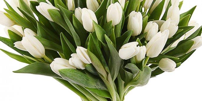 Как заказать с доставкой цветы в Риге: букет за 15 евро.