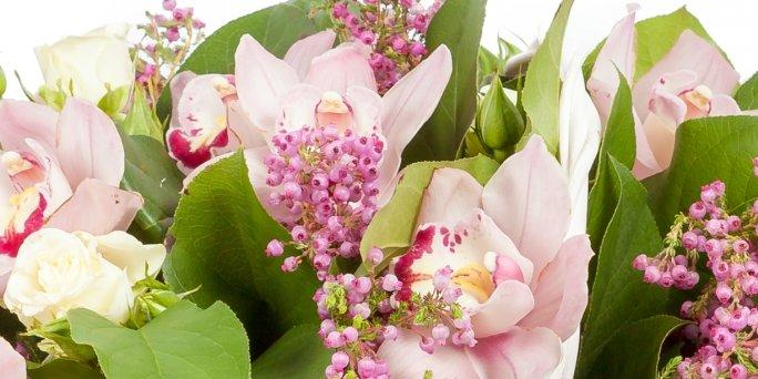Как подарить цветы в коробке в Риге: доставка.