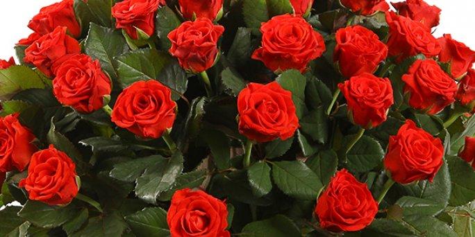 Заказ цветов Рига: Шикарные букеты – это тренд осеннего.