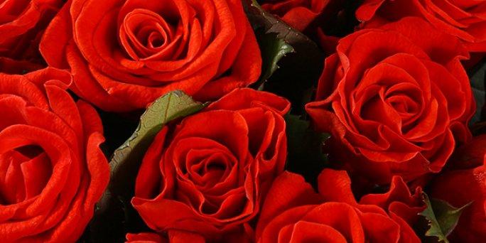 Доставка цветов Рига: Как купить увлекательный подарок маме?