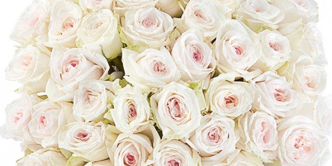 О чем обязательно надо помнить, заказывая цветы в Риге?