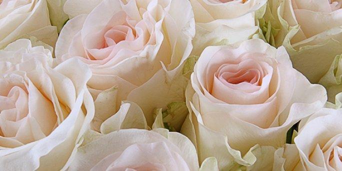 Заказ цветов Рига: букеты на юбилей.