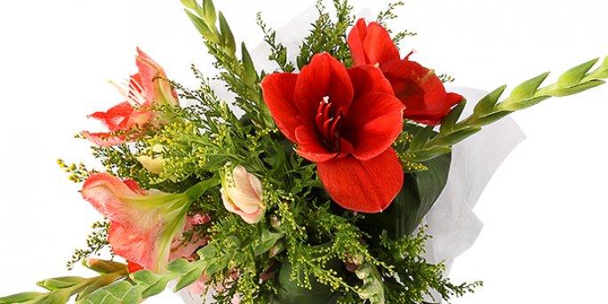 Заказ цветов Рига: Самые любопытные факты о комнатных цветах.