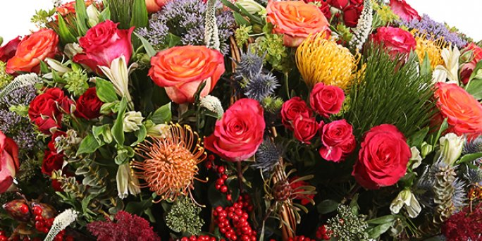 Доставка цветов Рига: Самые оригинальные факты о комнатных цветах.