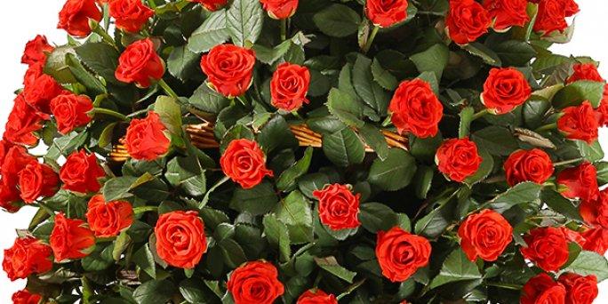 Доставка цветов Рига: Как купить уникальный подарок коллеге?