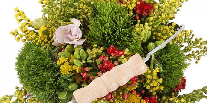 Как купить цветы на свидание в Риге: доставка.