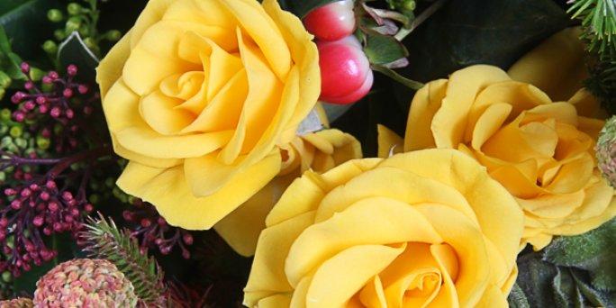 Как заказать цветы в Риге: радужные розы .