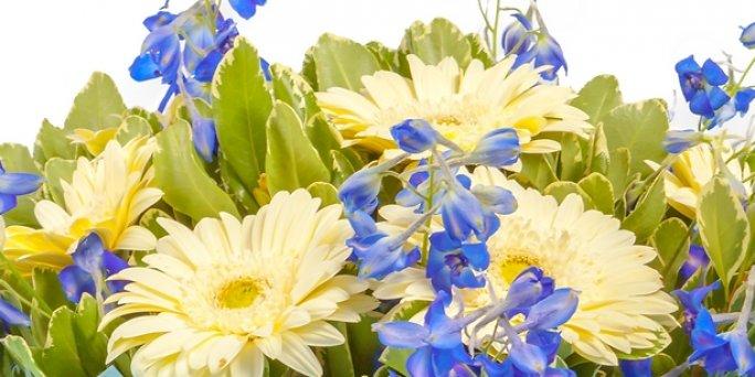 Где купить цветы в Риге: цветы к юбилею.