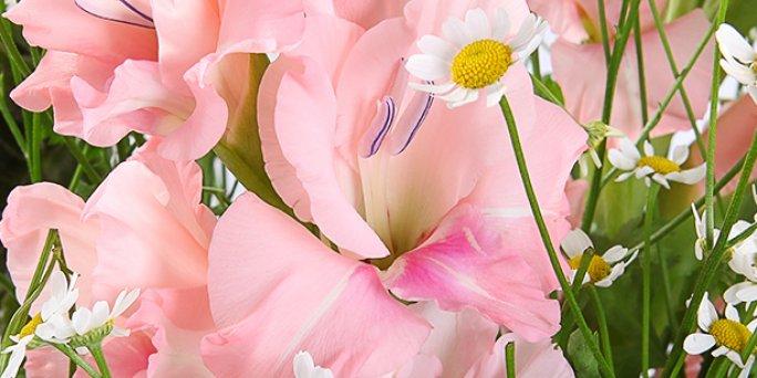 Как заказать цветы на рождение ребенка в Риге: цены.