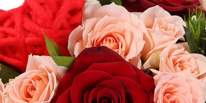 О чем следует помнить, покупая цветы в Риге?