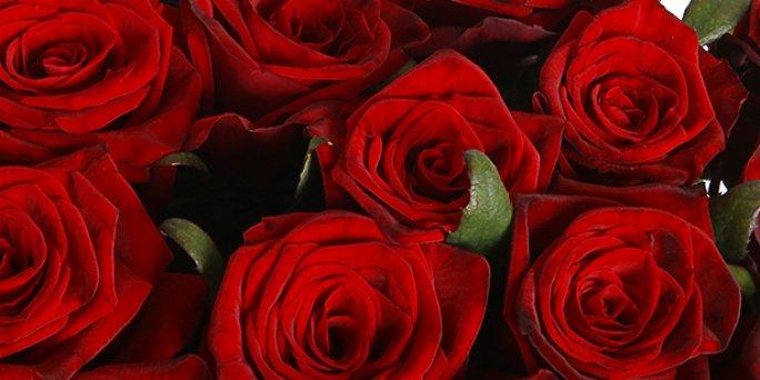 Собираетесь найти не дорогой подарок? Обратите внимание на цветы с доставкой в Риге!