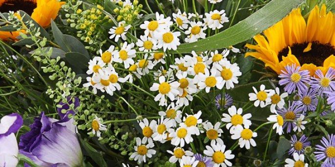 Заказ цветов Рига: Какие цветы купить на выпускной?