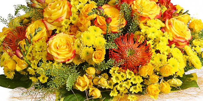Как выбрать цветы в Риге: цветы герберы.