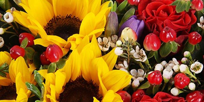 Доставка цветов Рига: Наиболее популярные факты о фитодизайне.