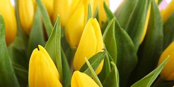 Желаете преподнести изысканный подарок - подарите букет цветов!