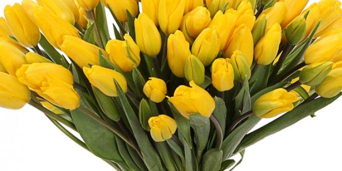 Заказ цветов Рига: Стильные цветы – это своеобразный вызов.