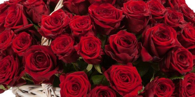 Как выбрать цветы в Риге: букет красных роз.