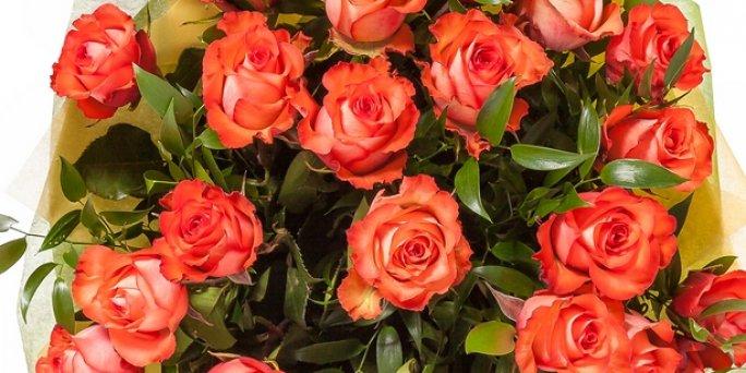 Купить цветы в Риге: Комнатные цветы - Советы профессионалов.