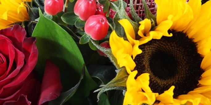 Цветы для души: Как быстро купить цветы в Риге?