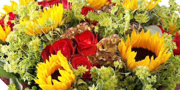Как подарить необычные розы в Риге: цены.
