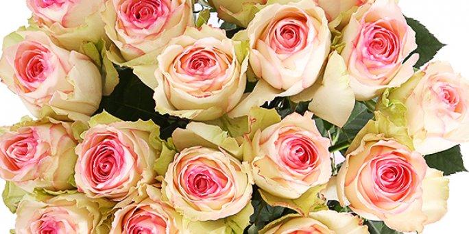 Что выбрать и как заказать цветы с доставкой в Риге: шикарные букеты цветов.