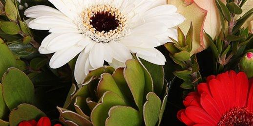 Где купить цветы с доставкой в Риге: букет цветов для мужчины.