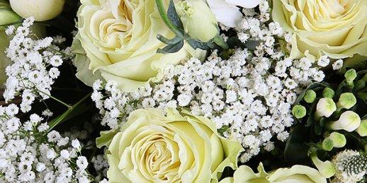 С чего начать выбор подарка в Риге: цветы тюльпаны?