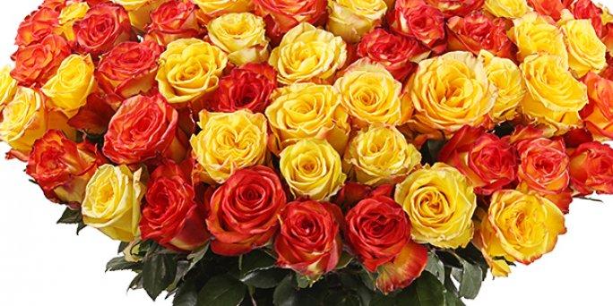 Что следует учитывать, заказывая цветы в Риге?
