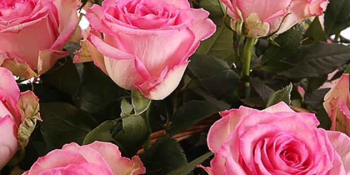Как купить цветы к юбилею в Риге: интернет-магазины.