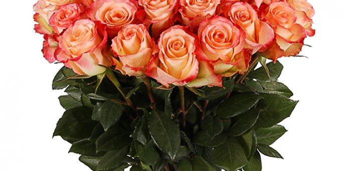 С чего начать выбор подарка в Риге: цветы мужчине?
