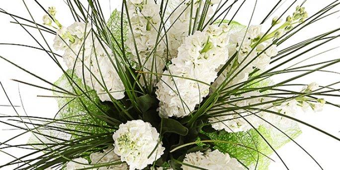 Как купить цветы в Риге: белые розы 70 см.