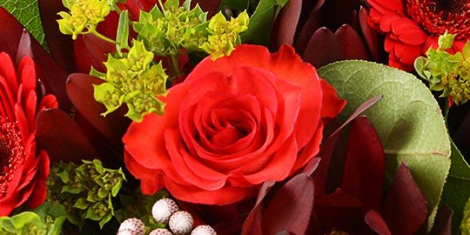 Как преподнести и где заказать цветы с доставкой в Риге: цветы мужчине .