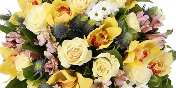 Как вручить цветы в Риге: красные розы 50 см.
