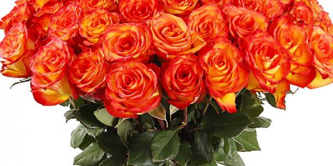 Заказ цветов Рига: Какие цветы купить жене?