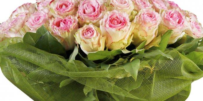 Доставка цветов Рига: Наиболее популярные факты о цветах.