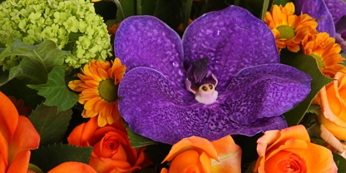 Заказать цветы в Риге: букет их орхидей.