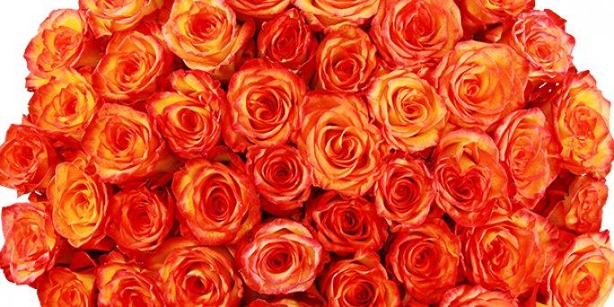 Что выбрать и как купить цветы с доставкой в Риге: букет девушке.
