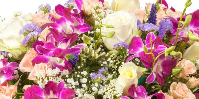 Заказ цветов Рига: Фитодизайн.