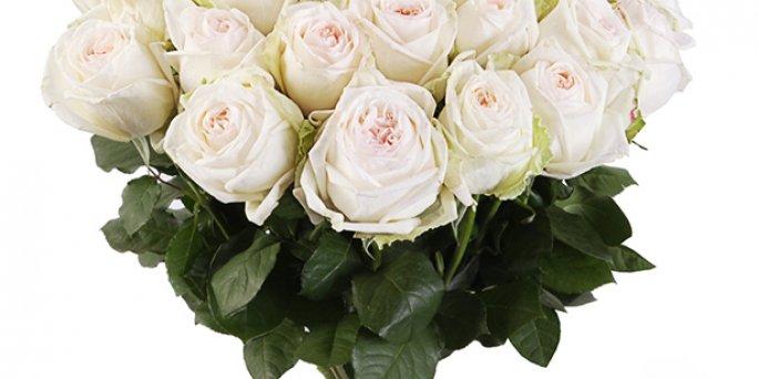 Заказ цветов Рига: радужные розы.