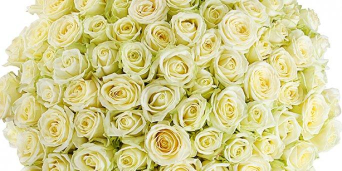 Как заказать шикарный букет цветов в Риге: интернет-магазины.