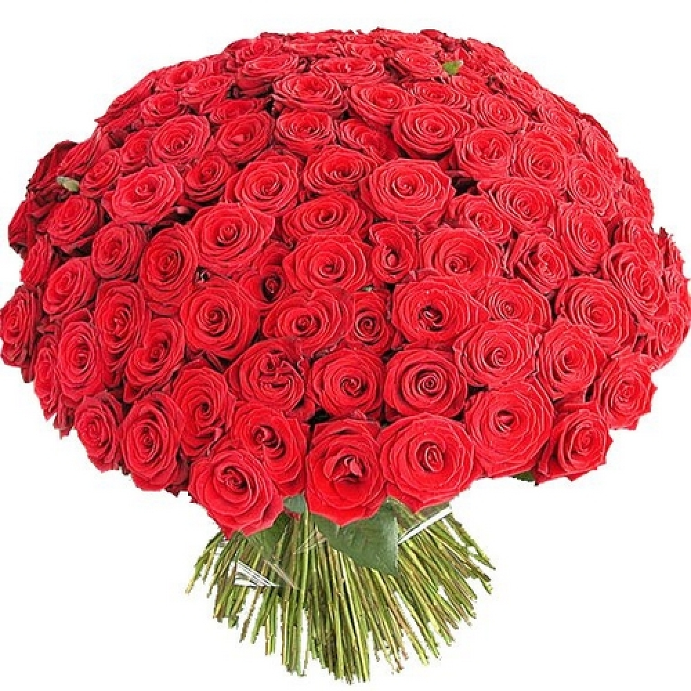 Bouquet from 101 rose big flowers is a premium class bouquet the bouquet from 101 rose big flowers is a premium class bouquet the best flowers of premium class with delivery in riga izmirmasajfo