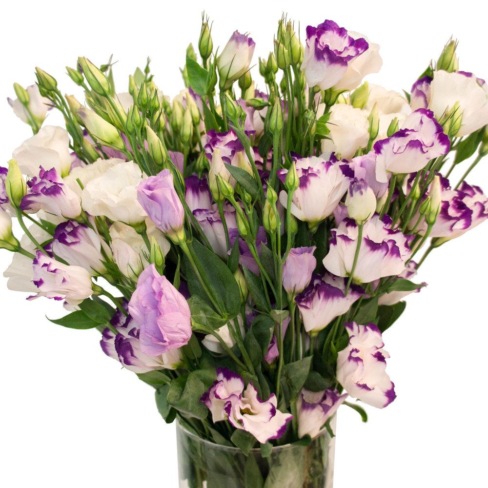 Цветы лизиантус фото букеты