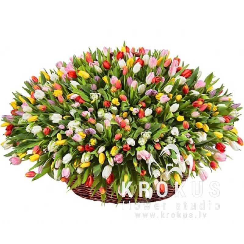 Магазин, доставка цветов в город риге круглосуточная