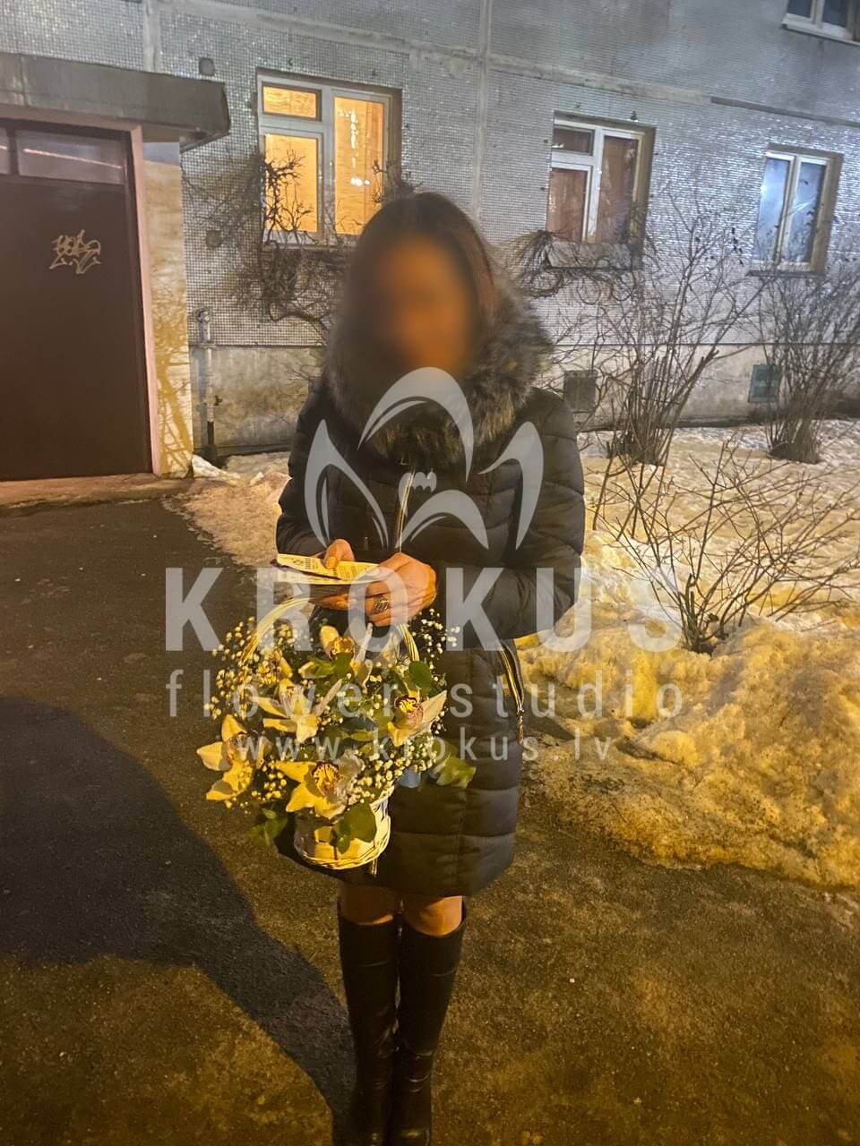 Deliver flowers to Rīga (orchidsgypsophilagum tree)
